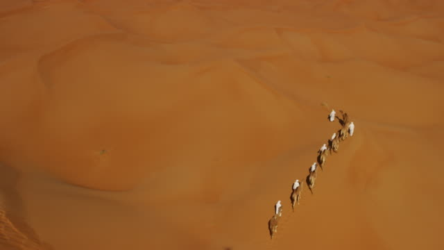 Aerial drone of convoy of camels in desert