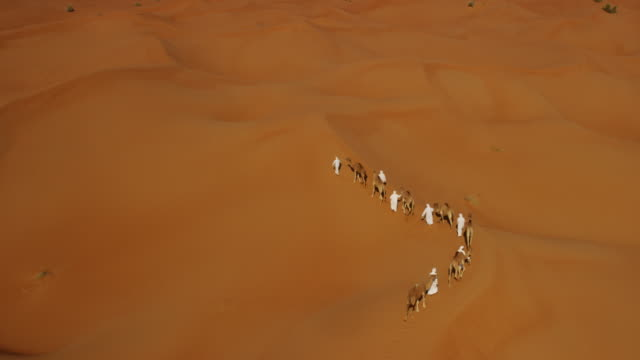Aerial drone of Middle Eastern male camel owners