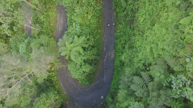 Aerial drone view of hikers ascending road through jungle