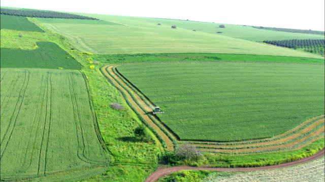 Aerial fields and combine harvesting crop, Galilee, Israel