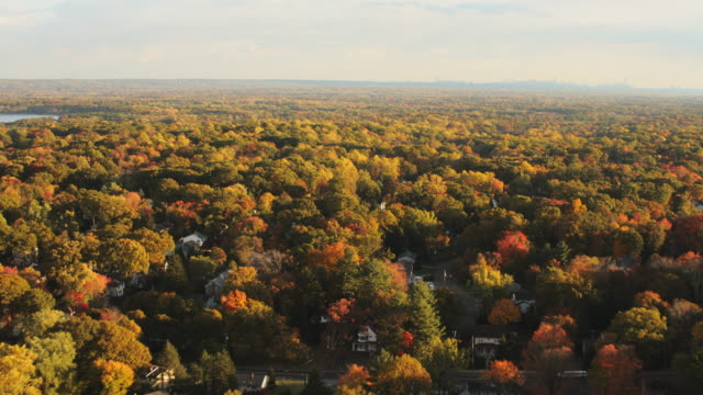 Aerial flying over Fall Foliage in upstate New York with Manhattan skyline in the distance