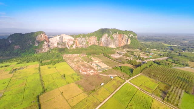 Aerial footage of rice field