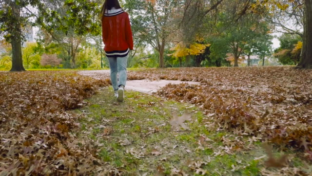 Aerial low angle view of a young millennial woman walking and kicking autumn leaves