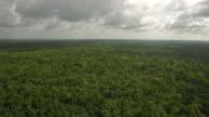 Aerial Mississippi Landschaft
