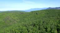Luftbild von einer großen Waldgebiet von Slowenien
