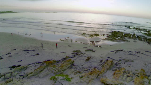 Aerial of people enjoying the beach at dusk/ Western Cape/ South Africa