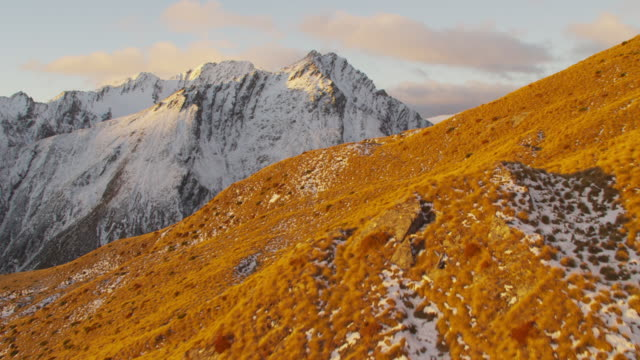 Aerial of tussock covered hillside and snowcapped peaks