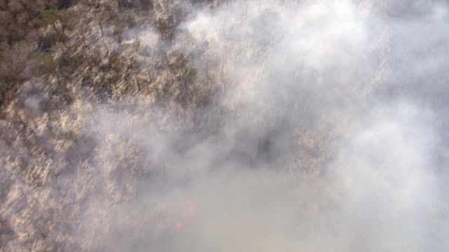 Aerial over forest fires during deforestation, Madagascar