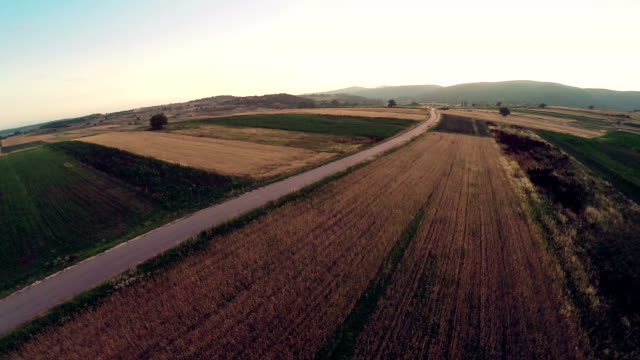 Aerial panorama over green fields farms summer