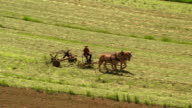 Aerial point of view over farmer (Amish) plowing fields with horses and old-fashioned thresher / Pennsylvania