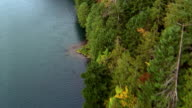 Aerial point of view over lake and forest-covered shoreline / Olympic Peninsula, Washington
