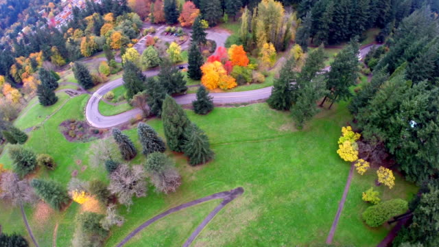 Aerial Portland SW Forest