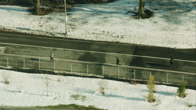 Aerial Runners in Central Park Winter