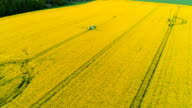 Aerial shoot of farmer fertilize rapeseed field with insecticide herbicide chemicals