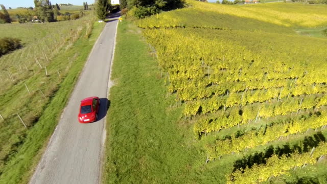 HD: Aerial Shot Of A Car Driving Along Vineyards