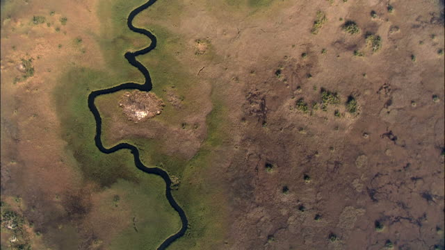 Aerial shot of a river and green belt in the Okavango Delta