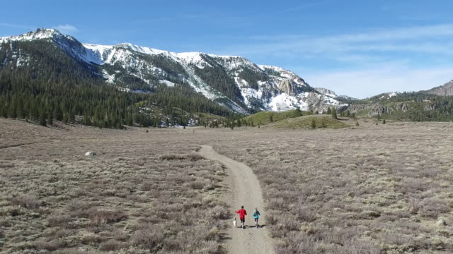 Aerial shot of a young man and woman trail running with dog on scenic mountain trail.