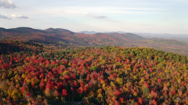 Aerial shot of foliage in the White mountains of New hampshire