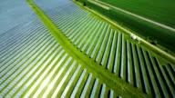 Veduta aerea di un impianto di energia solare