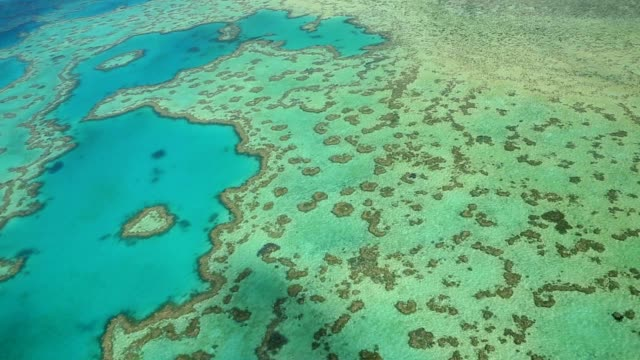 Aerial shot of the Heart reef in the Great Barrier reef. Australia