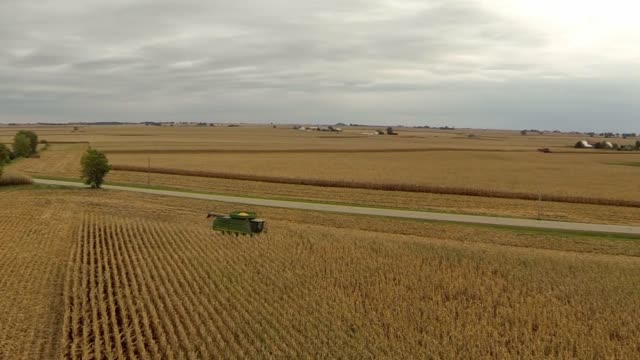 Aerial shots fly over cornfields in Tskilwa Illinois as John Deere farming equipment is driven into place before harvest Low aerial shots fly over...