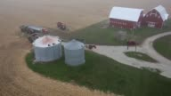 Aerial shots of a cornfield before and during Harvest Farming equipment sits near a silo Camera pans up an over a farmhouse and into a large...