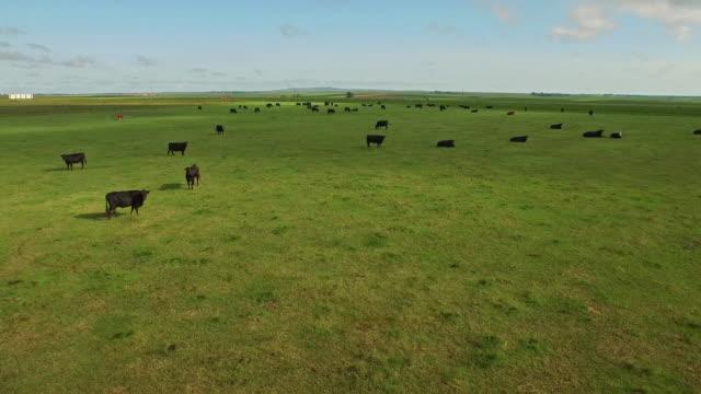 Luchtfoto South Dakota platteland