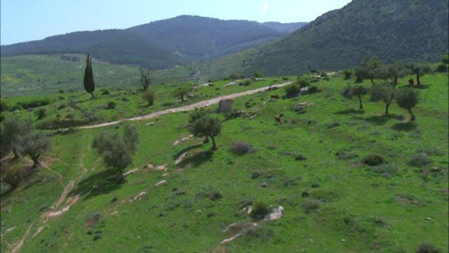 Aerial the Upper Galilee, Israel