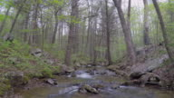 Aerial video from a quadcopter of a stream in the Blue Ridge Mountains of Virginia.