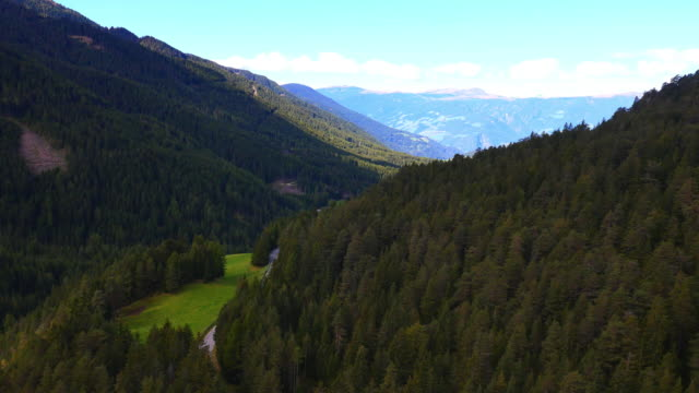 Aerial view Alpine forest valley Italian Dolomites Italy