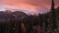 Aerial view flying though aspen trees at sunset