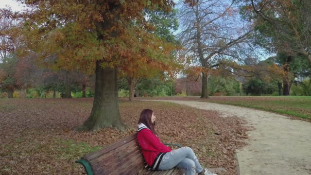 Aerial view of a young millennial woman on a bench during autumn