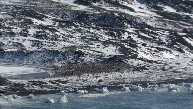Aerial view of Antarctic landscape and Emperor Penguin colony