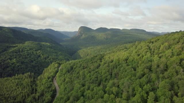 Luchtfoto van de boreale bossen van de natuur en de bergen in de zomer