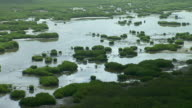 Aerial View Of Coastal Wetlands