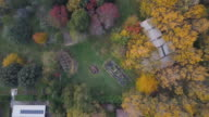 Aerial view of colourful trees and landscape in autumn, Victoria, Australia