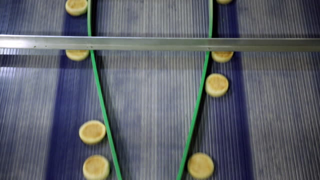Aerial view of English muffins on a production line
