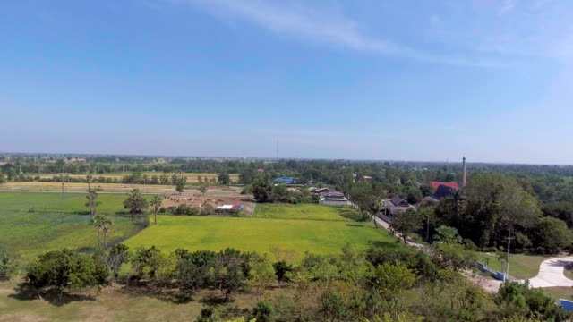 Aerial view of golden Buddha statue among rice paddy in countryside, Flying Backward