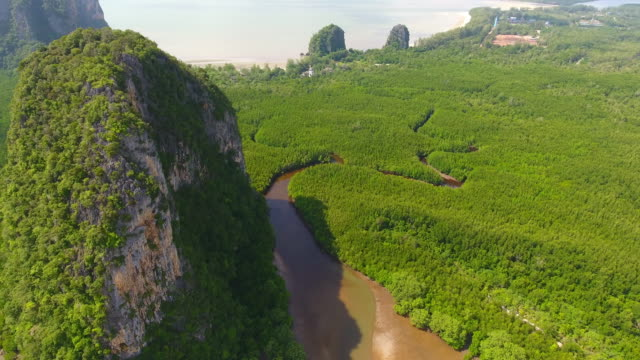 Aerial view of mangrove forest and sea at trang province, Thailand ,