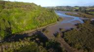 Aerial view of Okura Bush Scenic Reserve with Rangitoto Island in background.