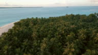 Aerial (drone) view of palm trees on tropical island