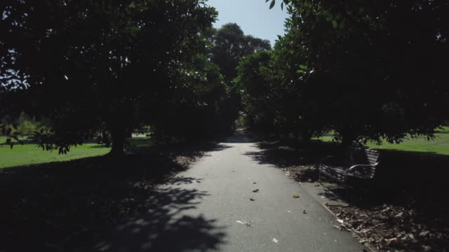 Aerial view of pathway with trees in a park, Melbourne