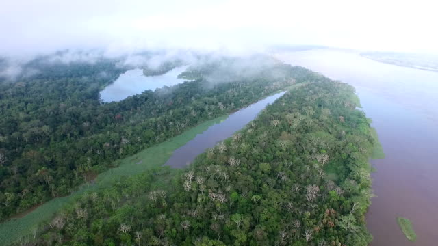 Aerial View of Peruvian Amazon and Jungle