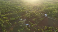 Aerial view of rural Philippines