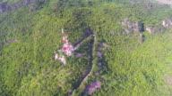 Luchtfoto van telecommunicatie toren, toren van de uitzending, op de groene berg