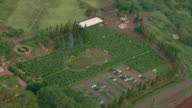 Aerial view of the Dole Plantation Pineapple maze on the Hawaiian Island of Oahu.