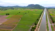 Luftaufnahme des grünen Reis Paddy und Bewässerung Wasserlaufs in Landschaft
