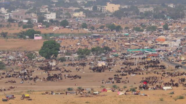 Aerial view of the Pushkar Camel Fair from Savitri Temple, Rajasthan, India