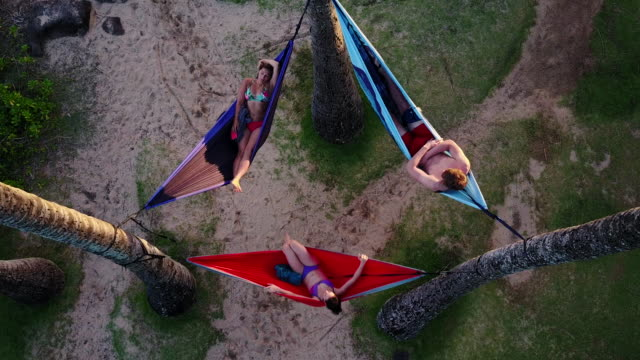 Aerial view of three young adults relaxing in hammocks among palm trees