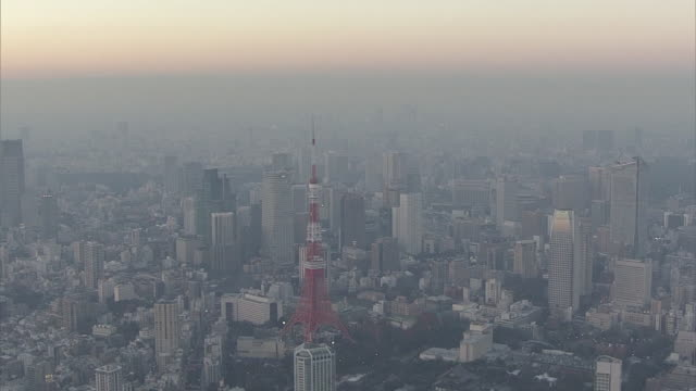 Aerial view of Tokyo Tower and surrounding area dyed by setting sun